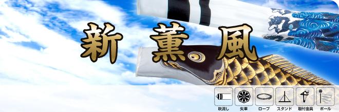 旭天竜新薫風