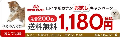 ロイヤルカナン 1円