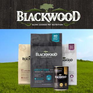 blackwood_320