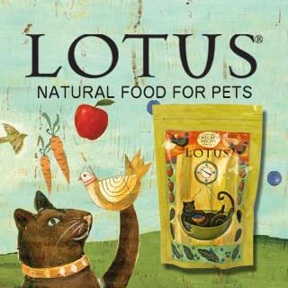 lotus-cat_320