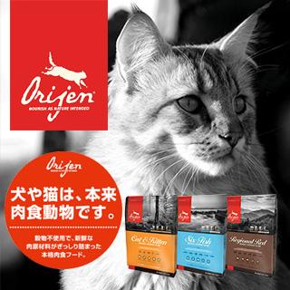 orijin-cat_320