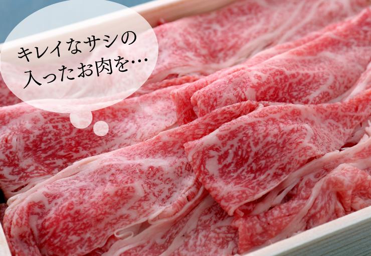 キレイなサシが入ったお肉を