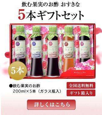 飲む果実のお酢 おすきな5本ギフトセット