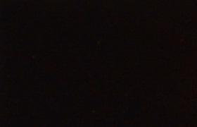 1080-GP99ブラックローズ