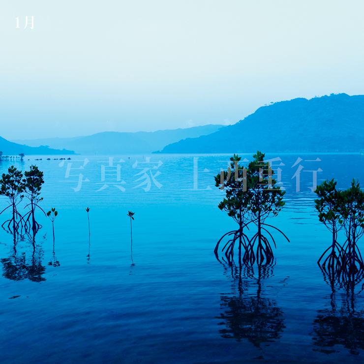 2022年の八重山石垣島カレンダーA2