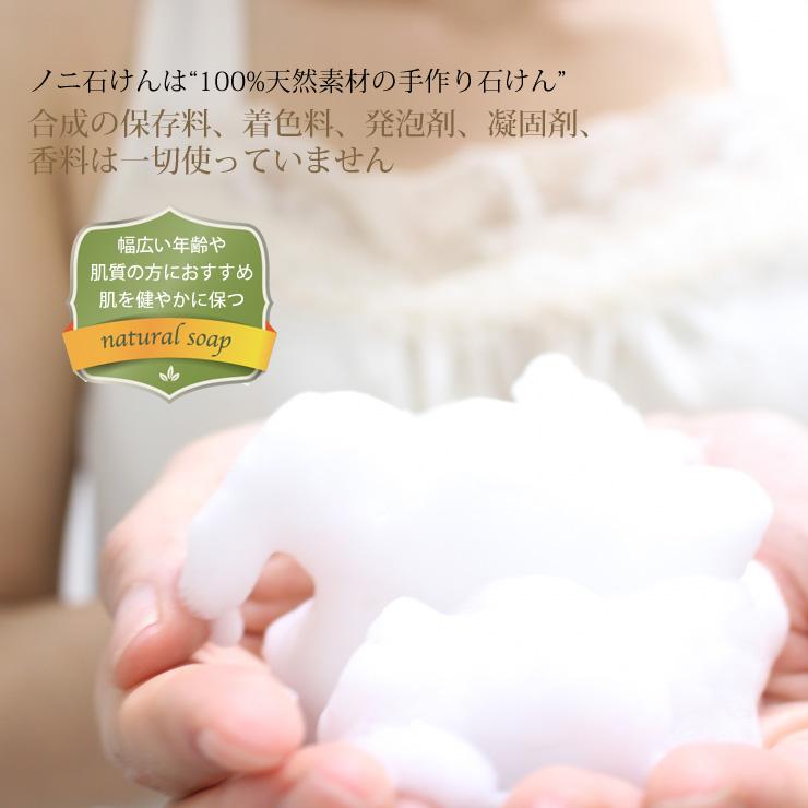 ノニ石鹸(100g) 沖縄県産ノニエキスを配合 肌に優しい手作りコールドプロセス製法 無香料 チュフディナチュール【送料無料】