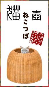 ゴロにゃんオリジナル 猫壺