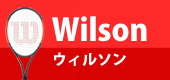 ウィルソン/wilson