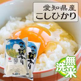 愛知県こしひかり10kg