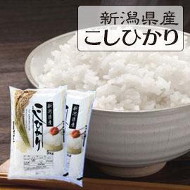 新潟県こしひかり10kg