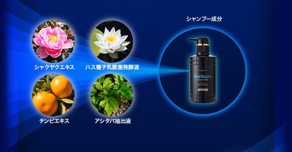 シャンプー主要成分 消臭効果が認められている「シャクヤクエキス」。毛乳頭細胞の活性化を促す「ハス種子乳酸菌発酵液」