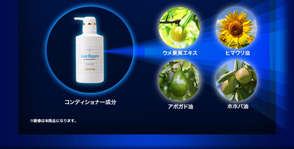コンディショナー主要成分 髪の「糖化」の抑制効果が期待され、コシやツヤを保ち痛みにくくする「ウメ果実エキス」。清潔な頭皮に適度な潤いを与える天然オイルに新配合「ヒマワリ油」。※画像は本商品になります。