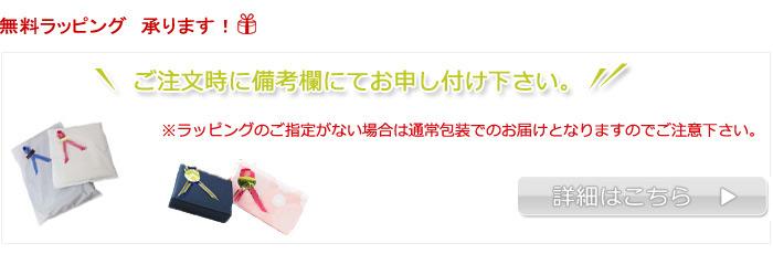 【ラッピング共通説明文大】
