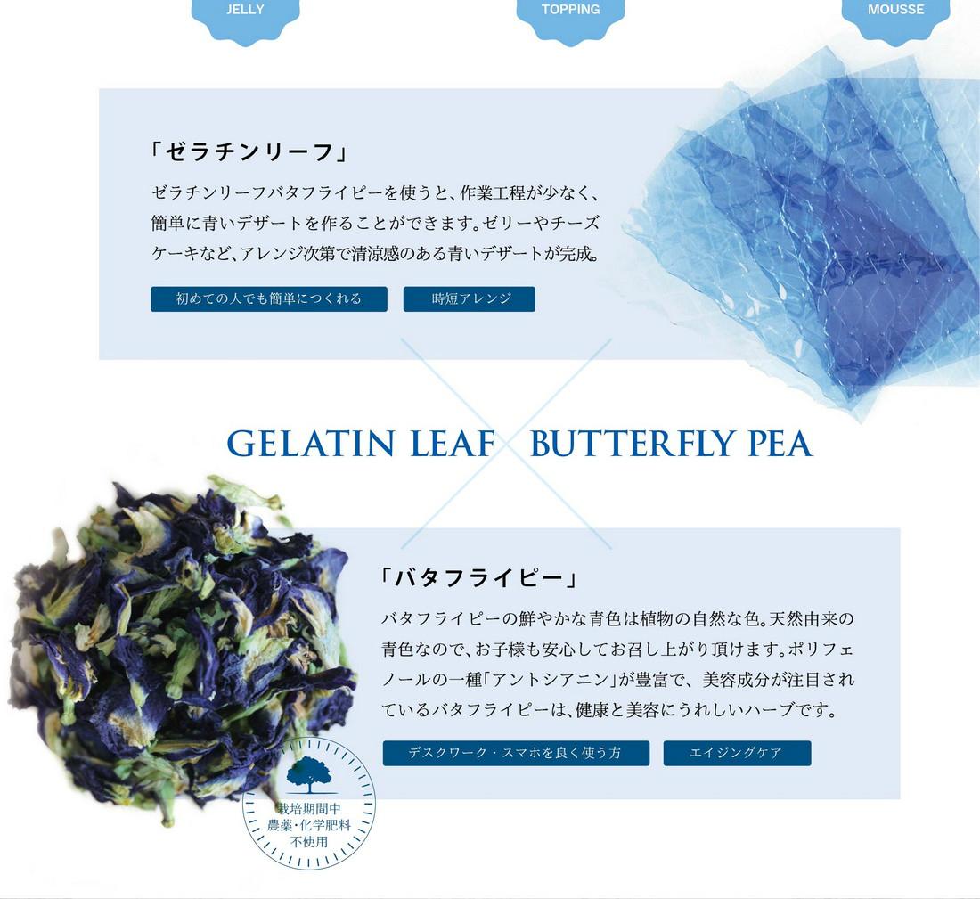 ゼラチンリーフバタフライピーを使うと作業工程が少なく簡単に青いデザートを作ることができます/ゼリーやチーズケーキなどアレンジ次第で清涼感のある青いデザートが完成/バタフライピーの鮮やかな青色は植物の自然な色/天然由来/ポリフェノールの一種アントシアニンが豊富