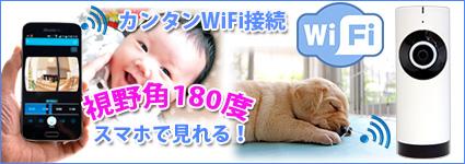180°ハイビジョン画質ワイヤレスWiFiカメラ EC6