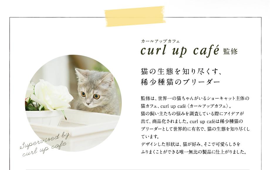 カールアップカフェ curl up cafe監修 猫の生態を知り尽くす、希少種猫のブリーダー
