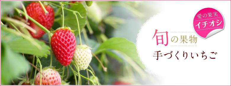 旬の果物手作りいちご