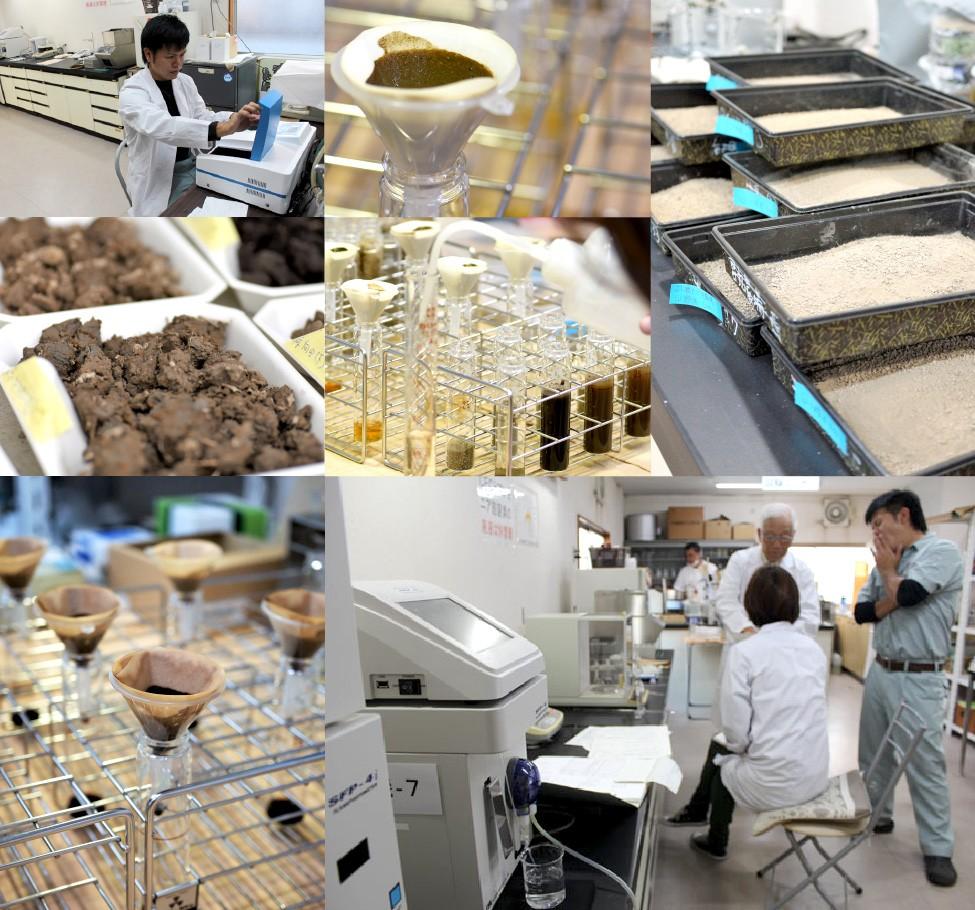 土壌診断 土壌分析
