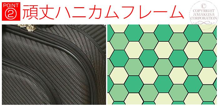 蜂の巣構造(ハニカムフレーム)