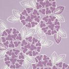 紫陽花ワルツ 薄パープル