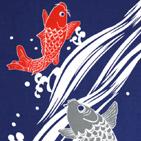 鯉の滝のぼり 紺