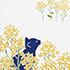 菜の花畑に猫