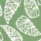 筍いっぱい グリーン