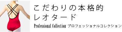 プロフェッショナルコレクション