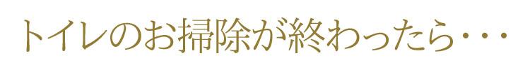 【縁起】【トイレ】【掃除】【招福】【開運】【お守り】【プチ神様】【神ってる】【風水】【浄化】【金運】