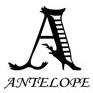 ANTELOPE アンテロープは洋服や小物を国内外からセレクトしています。