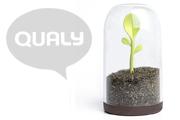 キュートなカラーとデザイン 「QUALY(クオリー)」