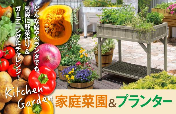 家庭菜園&プランター