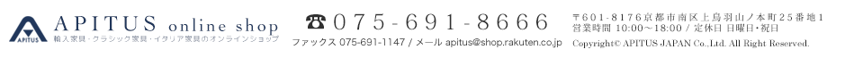 APITUS JAPAN Co.,Ltd. All Rights Reserved