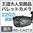 CA213