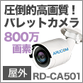 CA501