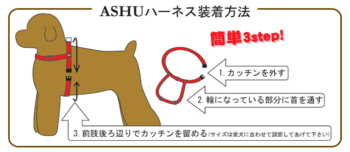 ASHUハーネス装着方法