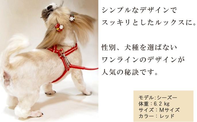 シンプルなワンラインのデザインが犬種を選ばないスッキリとしたルックスに。