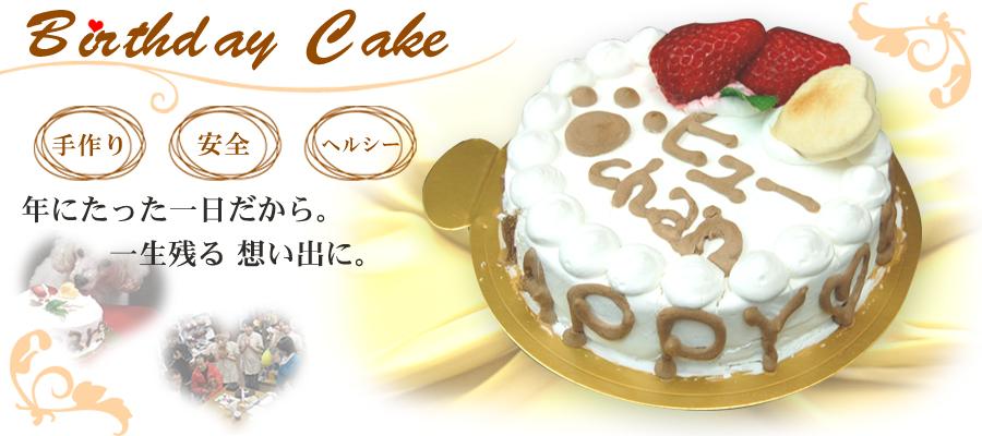 愛犬用バースデーケーキ