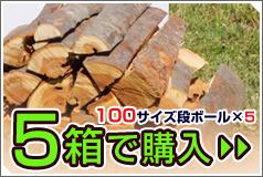 ケヤキ-5箱