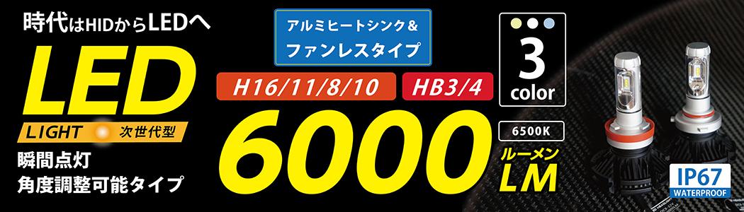 6000Lフォグ