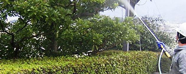 庭木や果樹園に