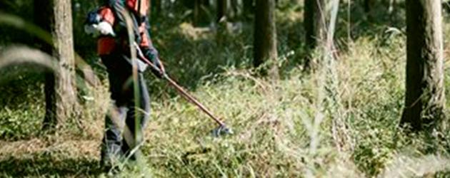 背丈ほどの草や林業の下草刈りに