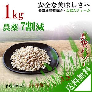 減農薬栽培もち麦、1kg、キラリモチ
