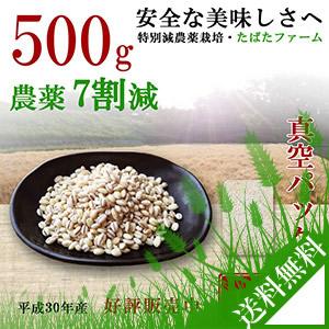 減農薬栽培もち麦、500g、キラリモチ