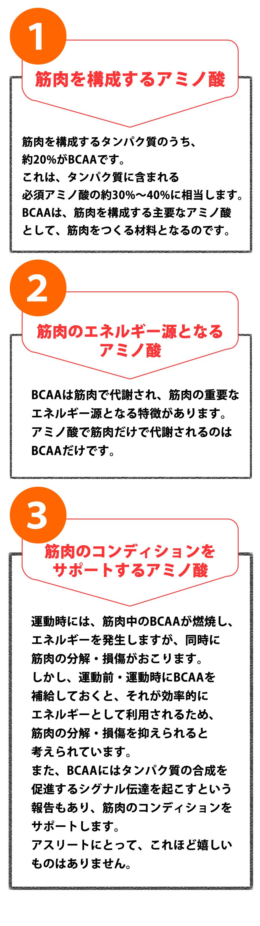 BCAA説明19