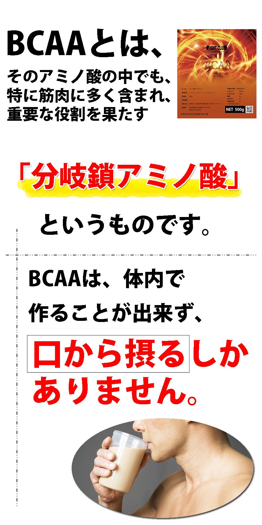 BCAA説明8