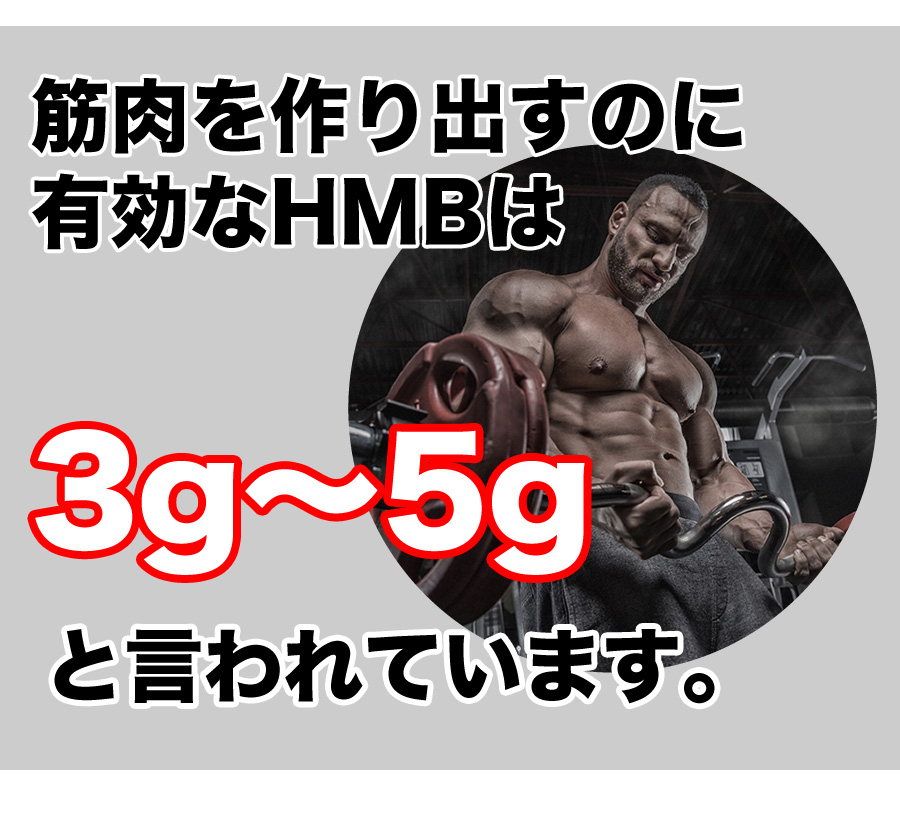 HMB説明11