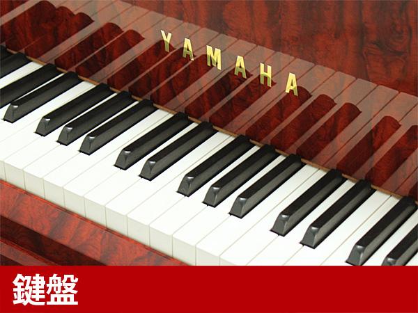 Yamaha Bb G