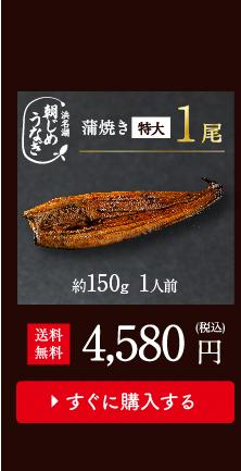朝じめうなぎ蒲焼1尾値段