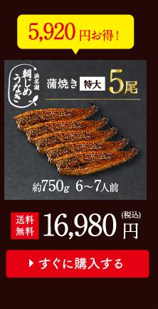 朝じめうなぎ蒲焼5尾値段